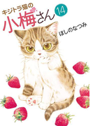 キジトラ猫の小梅さん(14)(ねこぱんちコミックス)