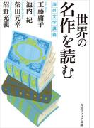 世界の名作を読む 海外文学講義(角川ソフィア文庫)