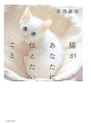 猫があなたに伝えたいこと