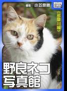 野良ネコ写真館【多摩川編】(impress QuickBooks)
