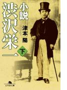 小説 渋沢栄一(下)(幻冬舎文庫)