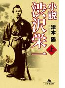 小説 渋沢栄一(上)(幻冬舎文庫)