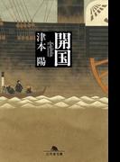 開国(幻冬舎文庫)