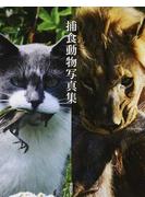 捕食動物写真集