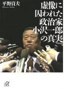 虚像に囚われた政治家 小沢一郎の真実(講談社+α文庫)