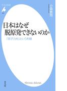 日本はなぜ脱原発できないのか(平凡社新書)