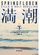 満潮 下(創元推理文庫)