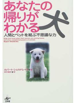 あなたの帰りがわかる犬 人間とペットを結ぶ不思議な力