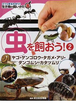 コツがまるわかり!生き物の飼いかた 8 虫を飼おう! 2 ヤゴ・ゲンゴロウ・タガメ・アリ・ダンゴムシ・カタツムリ