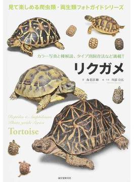 リクガメ カラー写真と種解説、タイプ別飼育法など満載!!