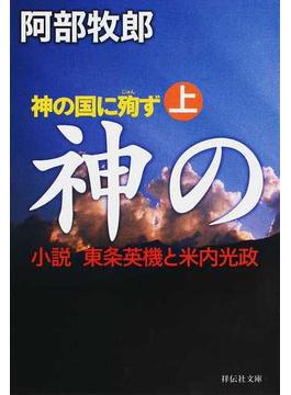 神の国に殉ず 小説東条英機と米内光政 上(祥伝社文庫)