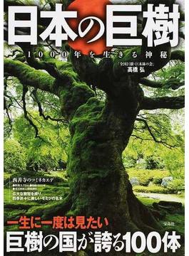 日本の巨樹 1000年を生きる神秘