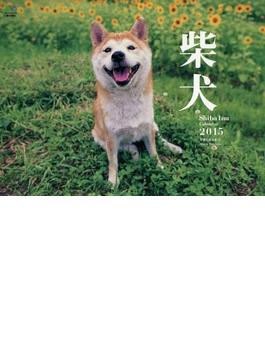 柴犬 カレンダー 2015