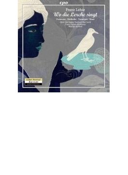 喜歌劇『ひばりの歌うところ』全曲 ブルケルト&レハール管、フェルトホーファー、タウンツォフ、他(2013 ステレオ)(2CD)
