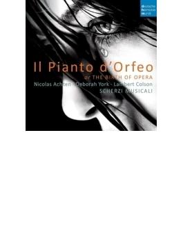 『オルフェオの嘆き』 アクテン&スケルツィ・ムジカーリ、D.ヨーク