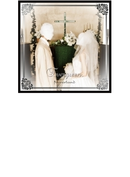 Evergreen. 【B-TYPE】