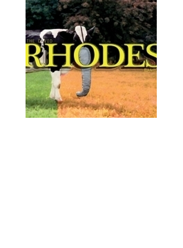 David Rhodes Band (Digi)
