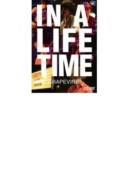 IN A LIFETIME (DVD+CD)