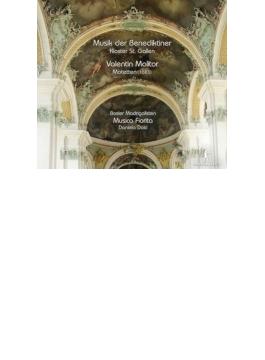 Motets: Dolci / Musica Fiorita Basler Madrigalisten