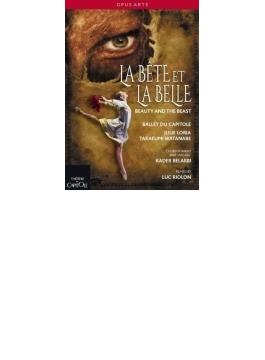 Le Bete Et La Belle: Loria 渡邊峻郁 Ballet Du Capitole