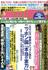 週刊現代 2015年 4/11号 [雑誌]