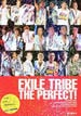 EXILE TRIBE THE PERFECT!