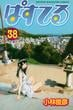 ぱすてる 38 (週刊少年マガジンKC)(少年マガジンKC)