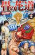 畳の花道 2 プロレス格闘技界世界最強決定! (villagebooks COMICS)