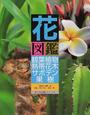 花図鑑観葉植物・熱帯花木・サボテン・果樹