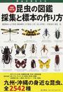昆虫の図鑑採集と標本の作り方