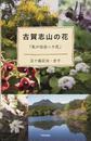 古賀志山の花