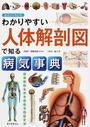 わかりやすい人体解剖図で知る病気事典