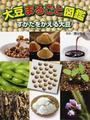 大豆まるごと図鑑