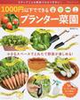 1000円以下でできるプランター菜園