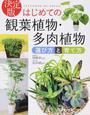 はじめての観葉植物・多肉植物選び方と育て方