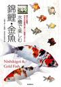 水槽で楽しむ錦鯉・金魚