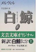 白鯨 モービィ・ディック 上 (講談社文芸文庫)(講談社文芸文庫)