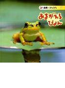 あまがえるぴょん (自然・きらきら)