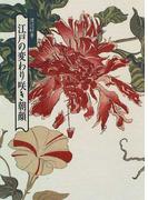 江戸の変わり咲き朝顔