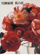 川瀬敏郎私の花