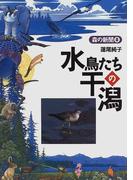 水鳥たちの干潟 (森の新聞)