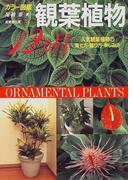 観葉植物12ヵ月 人気観葉植物の育て方・飾り方・楽しみ方 カラー図鑑