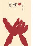 杖 (ものと人間の文化史)