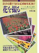 花を撮る 近くの公園でうまくなる〈感動写真〉術!! 人、猫、鳥、昆虫、風景とのハーモニー
