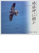 地球岬に翔ぶ 「ポロ・チケウエ」とハヤブサの王国 熊谷勝写真集