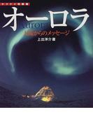オーロラ 太陽からのメッセージ (ヤマケイ情報箱)