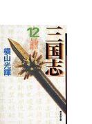 三国志 12 孔明の大論陣
