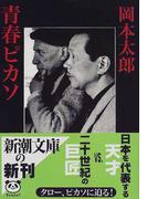 青春ピカソ (新潮文庫)