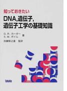 知っておきたいDNA,遺伝子,遺伝子工学の基礎知識