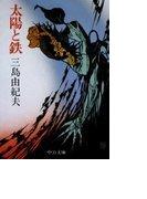 太陽と鉄 (中公文庫)(中公文庫)